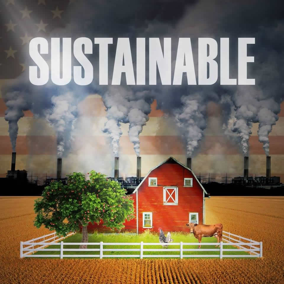 DOCUMENTARY REVIEW: SUSTAINABLE